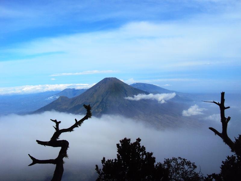 Pemandangan Gunung Sindoro via Gunung Sumbing