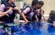 Belajar Memaknai Keindahan Bahari Nusantaraku